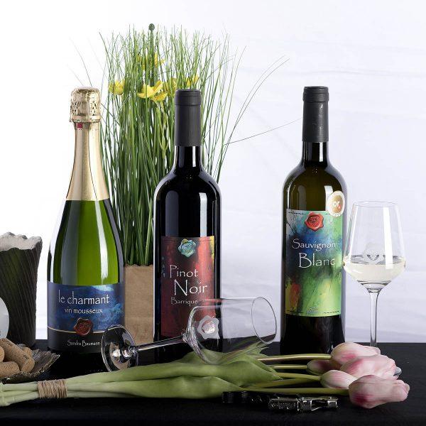 Weingemeinschaft, Wein kaufen, Wil ZH, Sauvignon Blanc, Riesling Silvaner, Chardonnday, Räuschling, Blanc de Noir, Pinot Noir, Pinot Noir Barrique, Divin, Winzer Weinsuppe, 8196, Degu, Set, Kirsch, Party